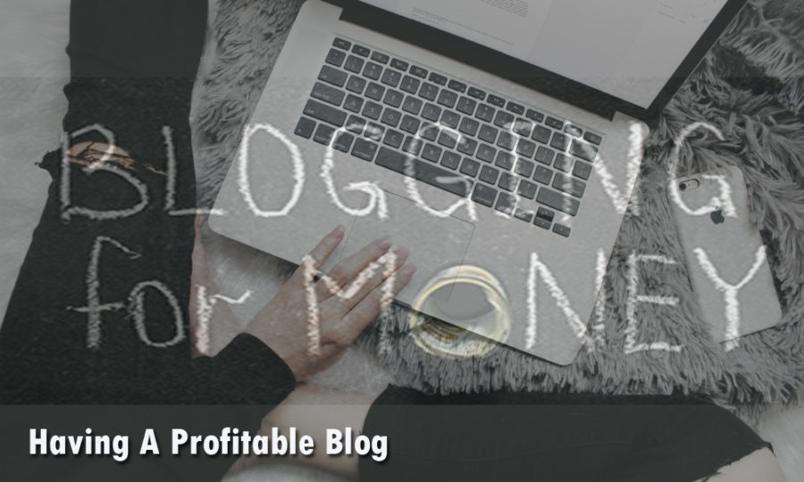 5 Crucial Taking Points For Having A Profitable Blog